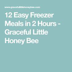 12 Easy Freezer Meals in 2 Hours - Graceful Little Honey Bee