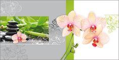#PC #Grusskarte Motiv #Orchideen mit Steine.