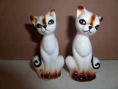 More S&P cats
