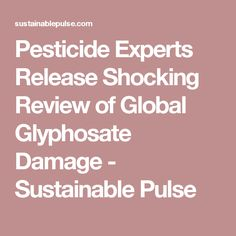 Pesticide Experts Release Shocking Review of Global Glyphosate Damage - Sustainable Pulse