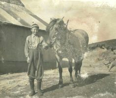 Old Pictures, Moose Art, Horses, Painting, Animals, Antique Photos, Animales, Old Photos, Animaux