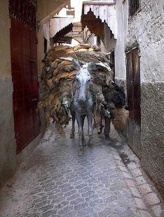 Medina of Fes, Maroc