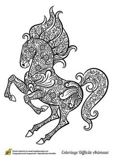 intricate horses coloring pages intricate coloring pages for adults announcing vidonya 4761