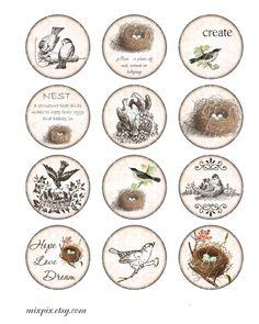 2 inch circles printable download digital collage sheet vintage images bird nest round print magnet sticker label hang gift tag card no.211D. $4.00, via Etsy.