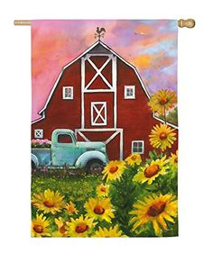 The Evergreen Flag Big Red Barn House Flag adds a fresh splash of color and timeless charm to your home's curb appeal. This whimsical house flag. Red Barn Painting, Summer Painting, Barn Drawing, Big Red Barn, Evergreen Flags, Barn Art, Antique Trucks, Country Barns, Outdoor Flags