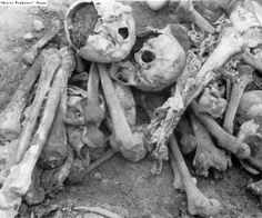 The bones of Belzec camp victims, exposed after a rainfall in the area.