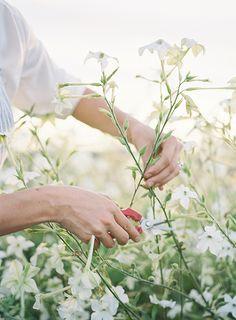 Floret Flowers, Flower Farmer Florist, Skagit Valley Washington | Heather Payne Photography