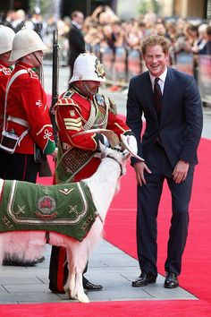 Prince Harry chats to Sgt Major Mark Jackson who is looking after the Regimental Mascot of the Battalion Welsh Guards 'Shenkin' as he arrives for the anniversary screening of Zulu at Odeon Leicester Square on June 2014 in London, England. Prince Harry Of Wales, Prince Harry Photos, Prince William And Harry, Prince Harry And Megan, Harry And Meghan, Prince Charles, Principe Henry, Harry Birthday, 30th Birthday