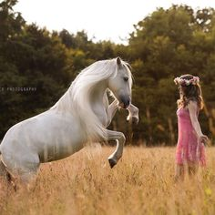 There are some pretty horse photoshoot images on this IG. - L