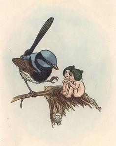 Blue fairy wren and Gum-nut babies (Superb Fairy-wren Malurus cyaneus) by May Gibbs Illustrators, Australian Artists, Baby Tattoos, Illustration, Drawings, Botanical Tattoo, Art, Cute Drawings, Flower Fairies