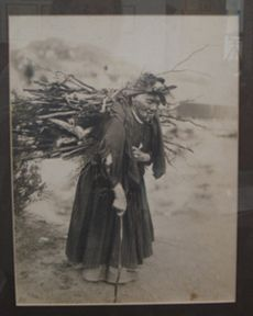 An early carbonette photograph, of an elderly Maori lady