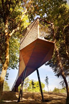 Treehouse in Portugal