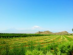 Armenia. Ararat y Khor Virap