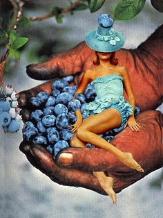 Blueberry Fairy by Eugenia Loli. Surrealist Collage, Collage Artists, Art Collages, Photo Collages, Eugenia Loli, Creepy Pictures, Collage Making, Human Art, Fairy Art