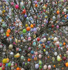 German couple decorate their garden tree with painted eggs. Easter comes but once a year - but one couple have turned it into a lifetime's project. Hoppy Easter, Easter Bunny, Easter Eggs, Easter Arts And Crafts, Egg Tree, Easter Tree, Easter Colors, Easter Celebration, Easter Holidays