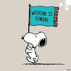 Snoopy Comics, Bd Comics, Snoopy Cartoon, Happy Weekend Quotes, Happy Friday, Funny Images, Funny Pictures, Charlie Brown Und Snoopy, Weekend Is Coming