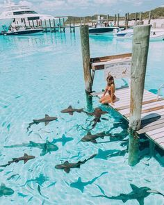 Trust AV Luxtravel to transform ordinary experience into extraordinary adventure. Anne Van Brussel takes care of every detail - VIP hotels, tours, cruise . Vacation Places, Dream Vacations, Vacation Spots, Aloita Resort, Beautiful Places To Travel, Romantic Travel, Jolie Photo, Foto Pose, Travel Aesthetic