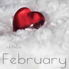 Today I'm thankful for the prettiest start to February. Really just one of those beautiful days where you feel so lucky to be alive. Seasons Months, Days And Months, Months In A Year, 12 Months, February Images, Hello February Quotes, February Month, New Month, Valentine Poster