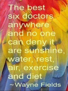 """""""The best six doctors anywhere, and no one can deny it, are: sunshine, water, rest, air, exercise and diet."""" - Wayne Fields"""