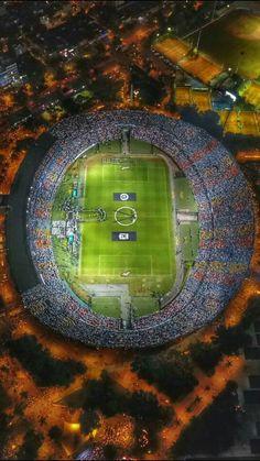 Conmebol vai declarar Chapecoense campeã da Copa Sul-Americana #globoesporte