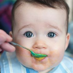 Summary: Babies who were weaned by mixing vegetable puree into milk and then baby rice ate more vegetables than those who had plain milk and baby rice. Small amounts of mixed-in vegetable puree helped