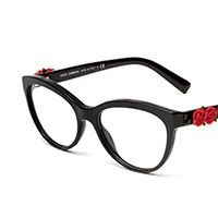 Women's black cat-eye glasses with red roses DG3224