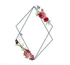 Floral frame card design illustration | free image by rawpixel.com Leaf Illustration, Floral Illustrations, Wedding Borders, Framed Tattoo, Creative Banners, Floral Banners, Frame Wreath, Flower Frame, Flower Wallpaper
