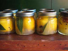 Preserved lemons for those lamb casseroles. Easy peasy.