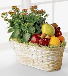 Say 'Thanks,' 'Get Well Soon,' or 'Thinking of You,' with a seasonal blooming plant and fresh fruit, too. Our FTD florists combine a long-lasting plant with assorted fresh fruit for two gifts in one. International Flowers, International Flower Delivery, Online Flower Delivery, Fruit Flower Basket, Fruit Flowers, Fruit Gifts, Online Florist, Ivy Plants, Gourmet Gift Baskets