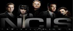 Critique de N.C.I.S. – Enquêtes Spéciales, saison 11  Fin de cycle ou fin de parcours ?
