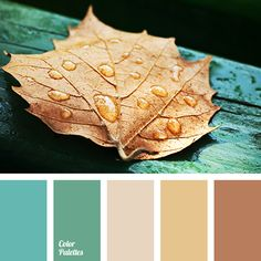 Color Palette: Shades of brown firmly associated with the colors of autumn and it is combined with green and turquoise, these shades are of particular warmth. This palette is good for decoration bedroom. Colour Pallette, Colour Schemes, Color Patterns, Color Combinations, Yellow Kitchen Walls, Kitchen Wall Colors, Yellow Walls, Room Colors, House Colors
