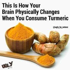 #ENLIGHTENED #repost #Turmeric is often looked at as a sort of 'miracle' spice, backed up by the over 600 experimentally confirmed health benefits it has shown. This is largely attributed to curcumin as the primary source of this, but did you know the whole turmeric could actually help with brain regeneration? And it's not just from #curcumin like you might expect! German researchers found in a petri dish was that the neural stem cells (NSCs) increased in number by as much as 80% when Vegan Keto Recipes, Healthy Recipes, Healthy Foods, Paleo, Cell Regeneration, Petri Dish, Dash Diet, Healthy Alternatives, Turmeric