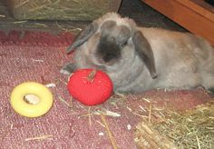 hand knitted jingle apple bunny rabbit roll by thehareapparent, £3.50