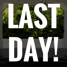 Less than 24 hours left to vote pledge and share our pitch. PLEASE help out and give us your vote. It makes a massive difference.  http://ift.tt/1r9uTUP  #VOOM #business #Startup #salad #grow #green #growing #greens #herb #herbs #nature #natural #plant #plants #hydroponics #crowdfunder #crowdfunding #fogponics #aeroponics #planting #food #spring #summer #health #sustainable #sustainability #smarthome #control #kickstarter #indiegogo by lettusgrow