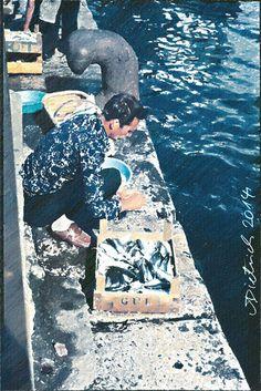 Fischer unter Galatabrücke, Istanbul