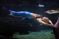 "https://www.youtube.com/watch?v=OxJZ4ewvyWM&list=PLy2Sgbdp1sc7SYR2ALbeugaEB-kFbwAs9 Only person to be legally named ""Mermaid"" http://www.MermaidMelissa.com"