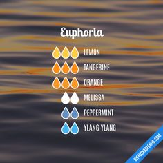 Euphoria - Essential Oil Diffuser Blend