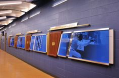 """""""The Fighting Irish will soon begin their time at the National Collegiate Fencing tournament next week! Advent had the pleasure of working with the defending champion Fencing team on their new state-of-the-art facility. School Signage, Office Signage, Wayfinding Signage, Signage Design, Environmental Graphic Design, Environmental Graphics, Donor Wall, Window Graphics, Sports Wall"""