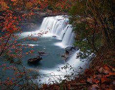 """Through the Trees"" ~ Taken at Little River, Alabama by Jeff Schreier"