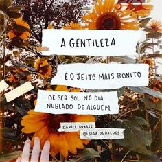 Pétalas Solt as Some Quotes, Daily Quotes, Words Quotes, Sayings, Portuguese Quotes, Frases Humor, Typography Quotes, Good Vibes, Quote Of The Day