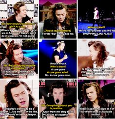 Harry Styles Memes, Harry Styles Cute, Harry Styles Pictures, Harry Edward Styles, One Direction Quotes, One Direction Pictures, I Love One Direction, Harry Styles Imagines, Band Memes