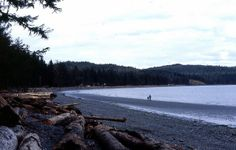 Port Hardy, BC | Storey's Beach, Port Hardy, BC | Flickr - Photo Sharing! Vancouver City, Vancouver Island, Places Ive Been, Places To Visit, Buckets, Pacific Northwest, British Columbia, Perfect Place, Around The Worlds
