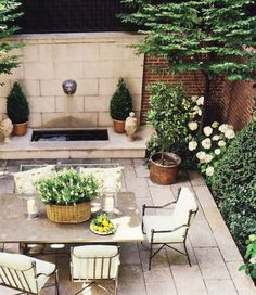 Thinking Outside The Boxwood:Crisp Green and White Courtyard