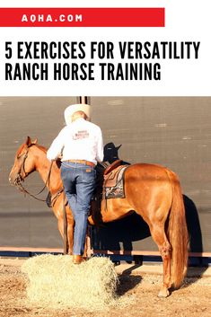Don't let the cold weather stop you from trying these exercises to prepare for your next Versatility Ranch Horse competition. Horse Training Tips, Horse Tips, Dressage, Ranch Riding, Horse Exercises, American Quarter Horse, Riding Lessons, Equestrian Outfits, Equestrian Fashion
