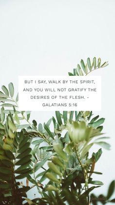 """But I say, walk by the spirit, and you will not gratify the desires of the flesh"" - Galatians 5:16"