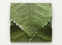 leaf packaging