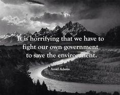 Overheid verziekt de aarde.