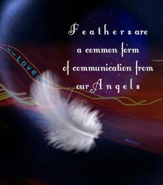 *Angel* Feathers*...