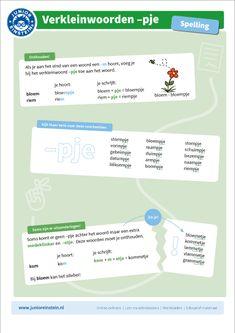 De overzichtskaart van verkleinwoorden op -pje kan als geheugensteun helpen bij het oefenen. Op de kaart staat de regel voor woorden die de uitgang -pje krijgen, zoals bloempje en riempje. Lees de uitleg door, zodat je goed kunt onthouden wanneer je -pje moet schrijven. Learn Dutch, Grammar, Einstein, Language, Classroom, Education, Learning, Kids, Class Room