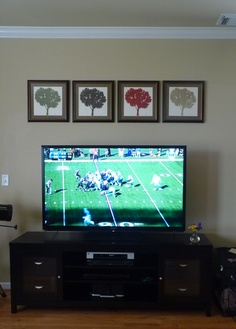 decorating around a flat screen tv my other idea was two offset floating shelves - Flat Screen Tv Living Room Ideas